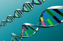 Ученые обнаружили ген, который вызывает половину всех раковых заболеваний