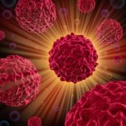 Доказана эволюционная древность рака