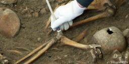 Ученые утверждают, что раком болели люди еще бронзового века