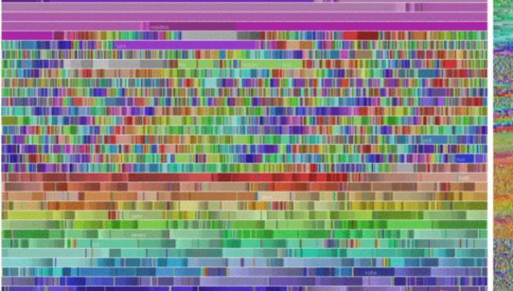 Новый алгоритм будет самостоятельно исследовать рак по научным статьям